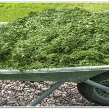 Жидкое зеленое удобрение из трав: как приготовить и использовать